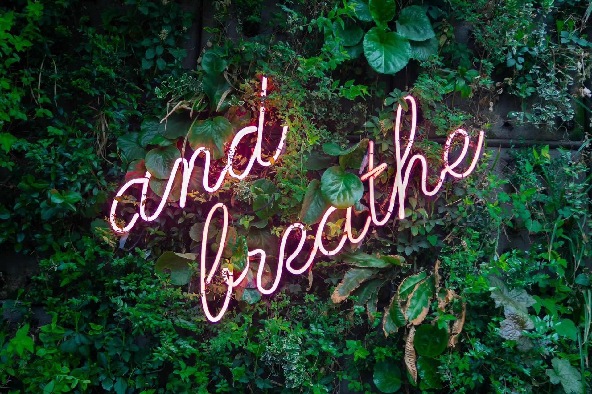 Breathwork for Releasing Trauma